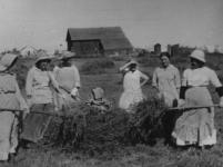 Alice Constance Austin, Las mujeres de Llano del Río