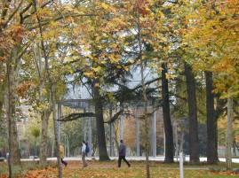 Carmen Espegel y Ana Espegel (2004): Rehabilitación y Adecuación del Parque Salón de Isabel II, Palencia.